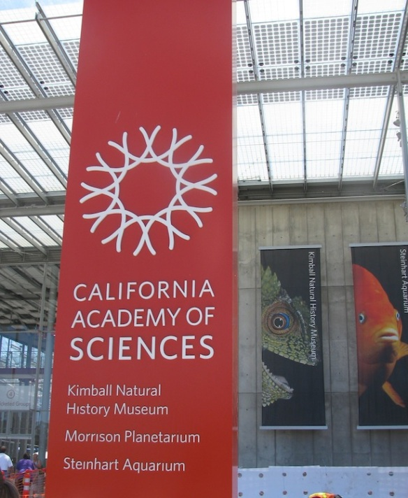 California Academy of Sciences Museum
