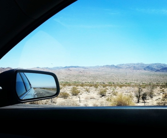 The view of the CA desert outside my window.