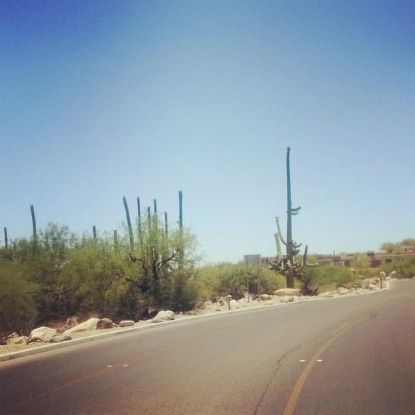 roadtrip3